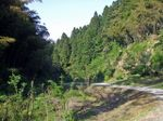 Senoyama3