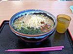 Nikuwakame_udon