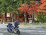 Takkokunoiwaya_bisyamondou1
