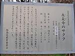 Eisenji_no_sakura1