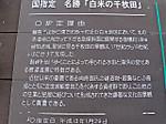Shiroyone_senmaida3
