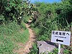 Arasaki_kaigan1