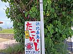 Hamahigajima_takomeshi
