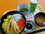 Ibaraki_umi_no_kaori