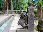 Tamagakikomainu1