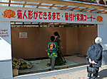 Kasumigajou_kouen6