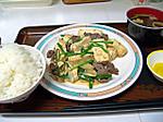 Gyuuniku_to_toufu_no_ninnikuitame